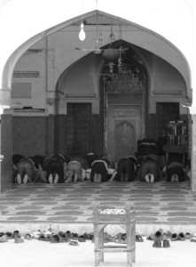 Prayer time (click to enlarge)