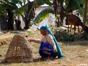Nepalese Lady weaving basket, Pokhara, Nepal