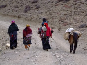 Carrying supplies to the Annapurna region