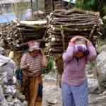 Ladies carrying firewood in Nepal