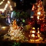 Christmas Mini Trees