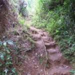 The Sagada trail