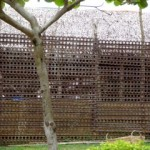 Maximum security block at Iwahig Prison