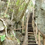Wooden steps along the monkey trail in Sabang
