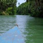 Sailing down a river in Bohol