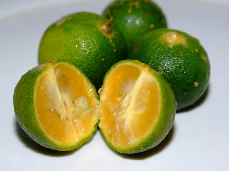 Calamansi fruit from the Philippines