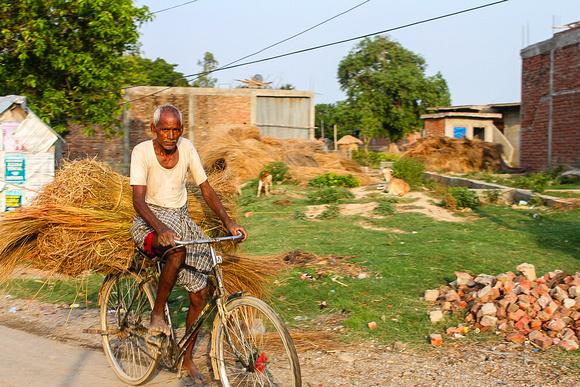 Man on bicycle Lumbini, Nepal