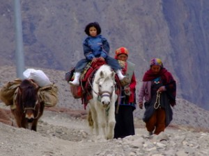 Nepalese Women with horses - Nepal