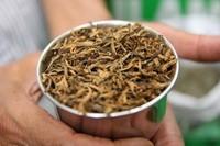 Tea in Nepal