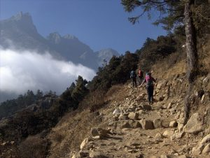 Trekkers on a trail in Nepal