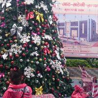 Christmas tree in Pokhara