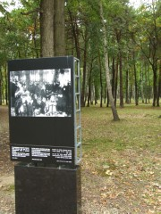 Photo memorial of the people who died in the forest around Birkenau