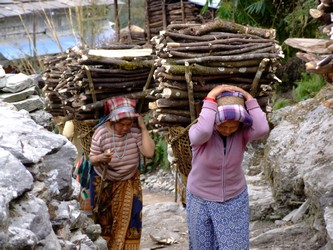 Women carrying firewood in Nepal